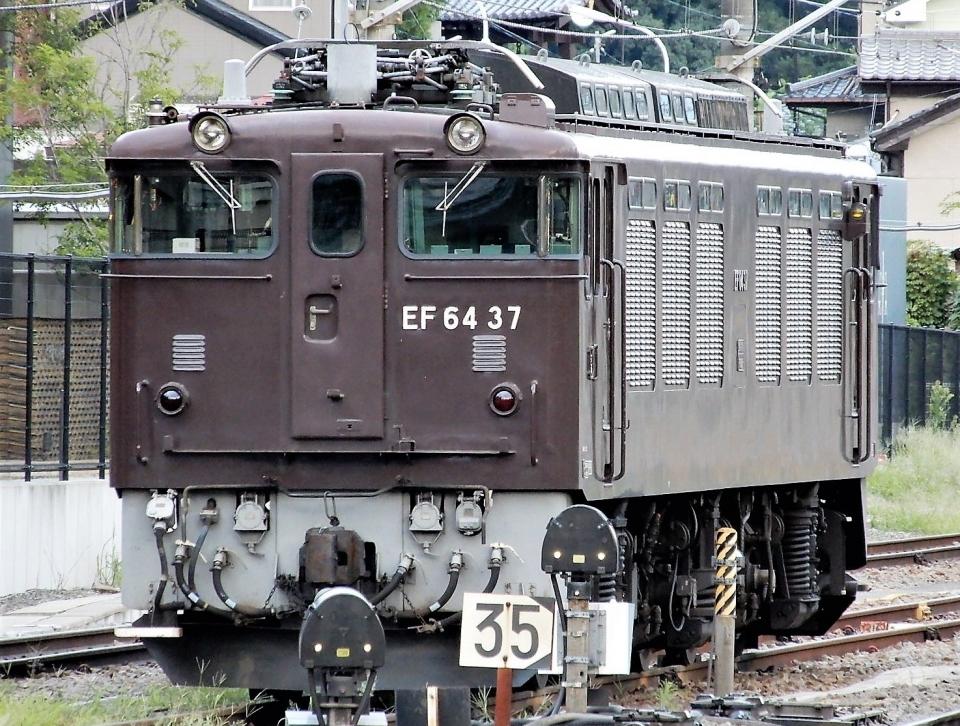 ニュース画像 1枚目:お膝元、甲府駅での「EF64 37」(Ome  Rapidさん撮影)