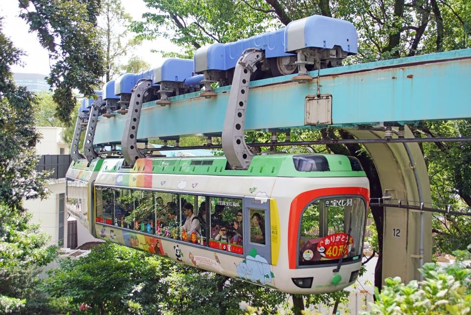 ニュース画像 6枚目:休止中の上野動物園内にある都営40形(ちゃぽんさん撮影)