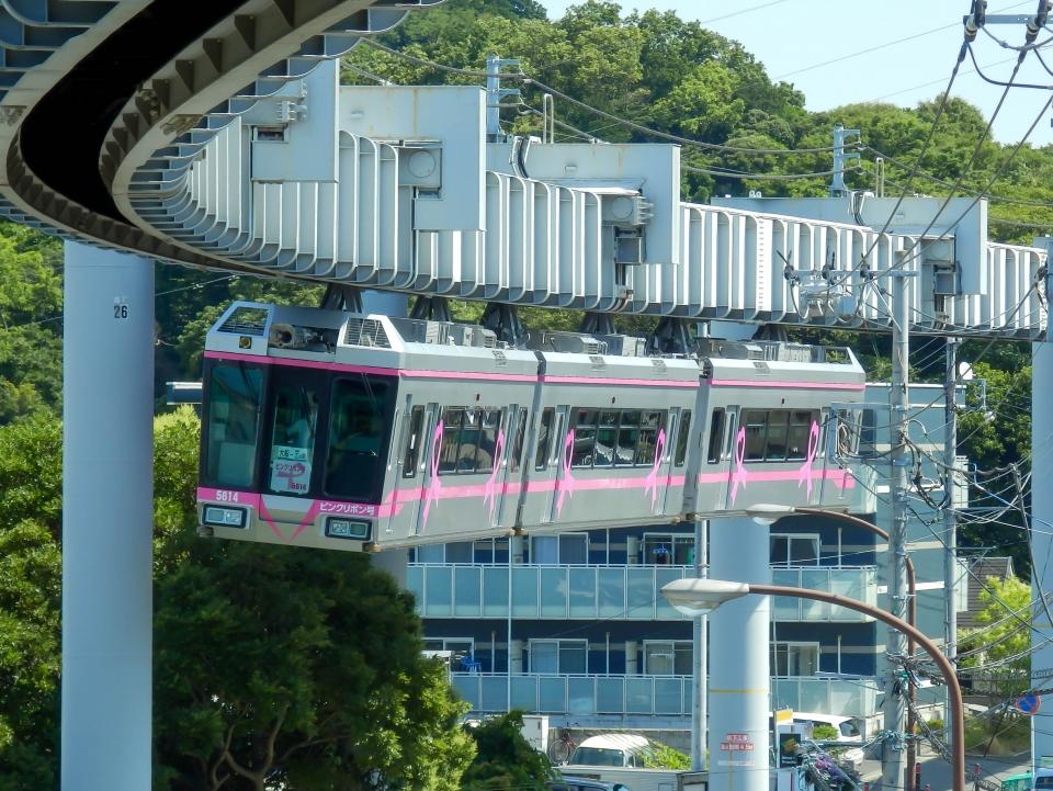 ニュース画像 8枚目:湘南モノレール5000系・5613F編成(さんたかさん撮影)