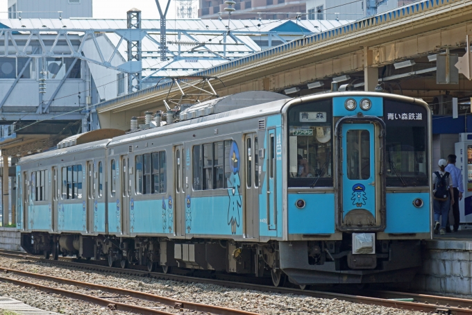 鉄道 運行 森 状況 青い
