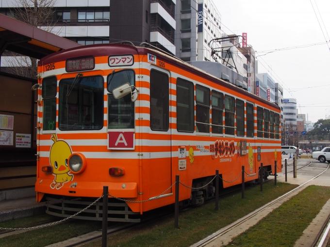 熊本市交通局1200形電車 1205 熊...