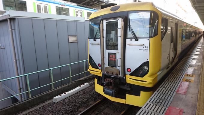 JR東日本E257系電車 新宿さざな...