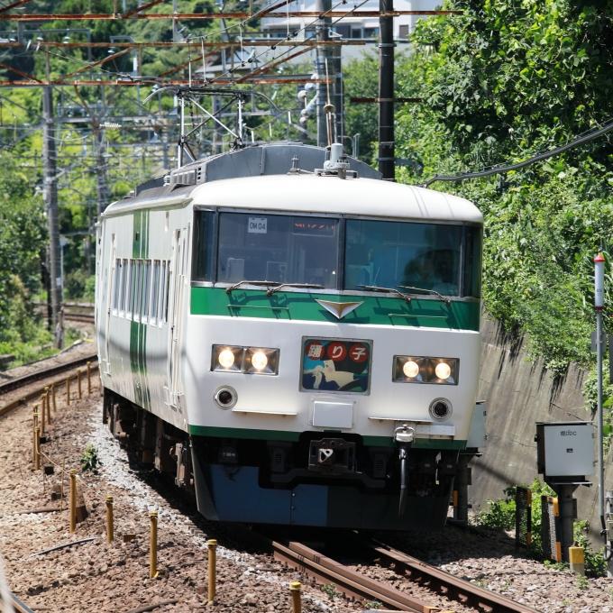 国鉄185系電車