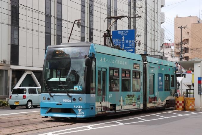 函館市電9600形 9602編成 (駒場車庫) 徹底ガイド | レイルラボ(RailLab)